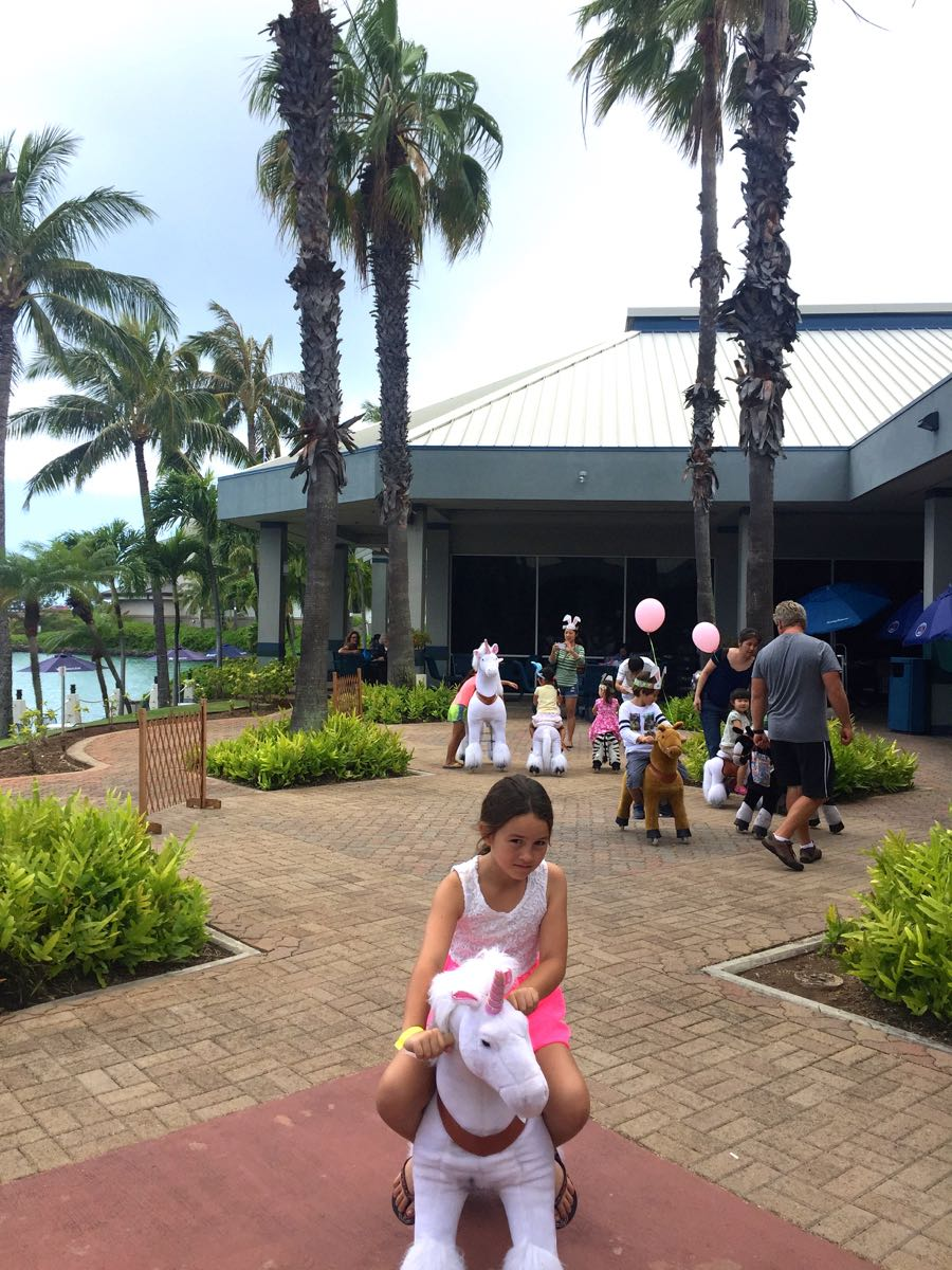 Hawaii Party Rentals And Birthday Parties 04