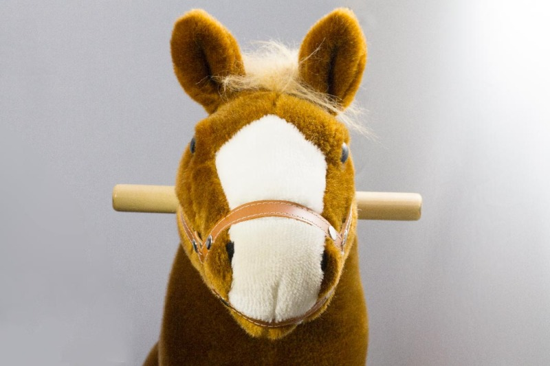 hali-hali-rides-pony-1